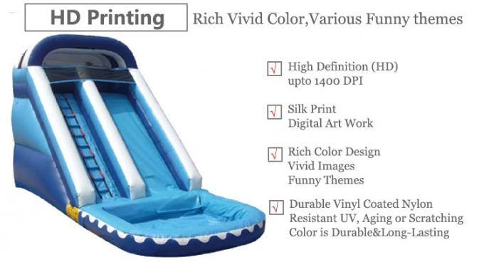 Inflatable water slide (3)