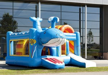 Whale Inflatable Combo supplier