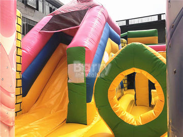 Big Pink Princess Inflatable Bouncer , Professional Commercial Bounce House supplier