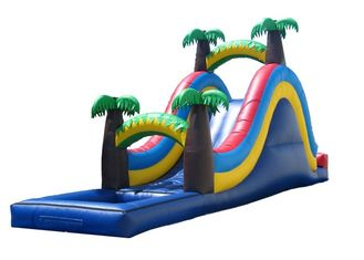 Wonderful Palm Tree Inflatable Wet Slide For Small Kids / Fun Water Slide supplier
