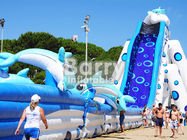 China Blue Animal Giant Dolphin Inflatable Water Slide Adult Size Huge Inflatable Slides factory