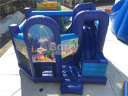 China Customized Inflatable Bouncer / Inflatable Bouncy Castle With Slide factory