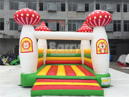 Commercial Grade Inflatable Kids Moon Bounce House For Indoor