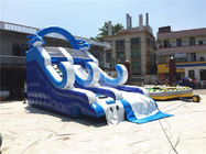 China Blue Small Inflatable Dolphin Slide With PVC Material / Blow Up Climbing Wall factory
