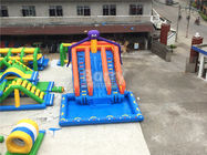 Large Octopus Inflatable Water Park , Inflatable Pool Slide On Land Park