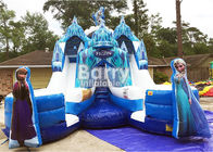China Customized Size Frozen Double Commercial Inflatable Slide Indoor And Outdoor For Kids factory