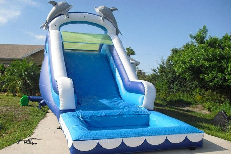 China Play Inflatable Water Slides For Kids / Dolphin Inflatable Pool Water Slide factory