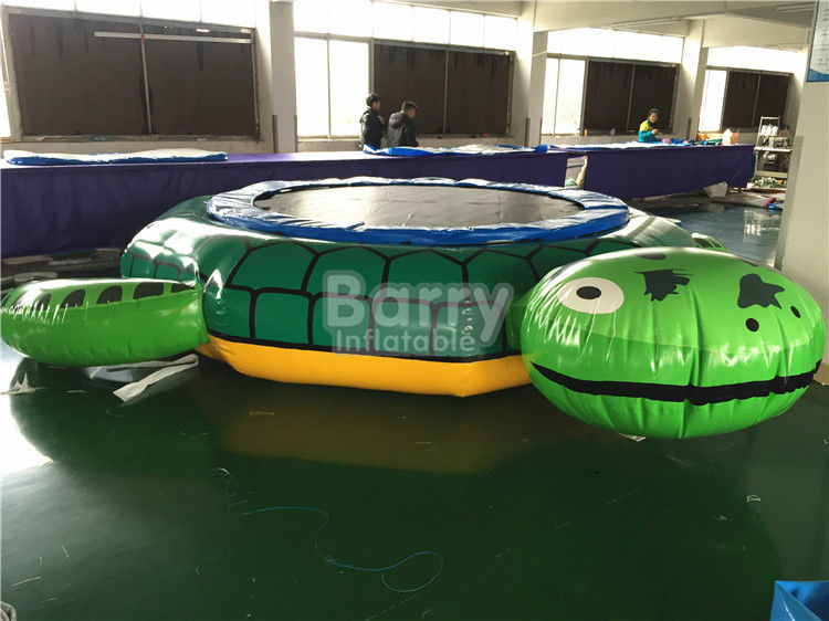 China ODM Inflatable Turtle With Slide Durable 0.9mm Pvc Tarpaulin Material factory