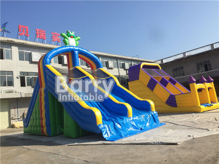 China PVC Tarpaulin Double Lanes Inflatable Water Slides Frog For Swimming Pool factory
