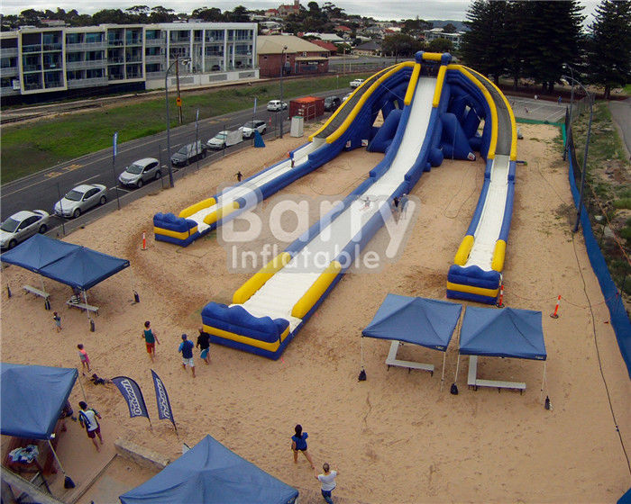 China Logo Printed Giant Inflatable Slide , Hippo Three Lanes Inflatable Water Slide factory
