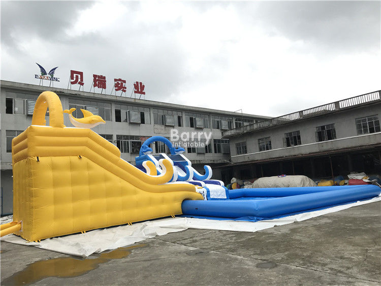 China Customized Inflatable Water Park Slide With Pool / Kids Inflatable Playground factory