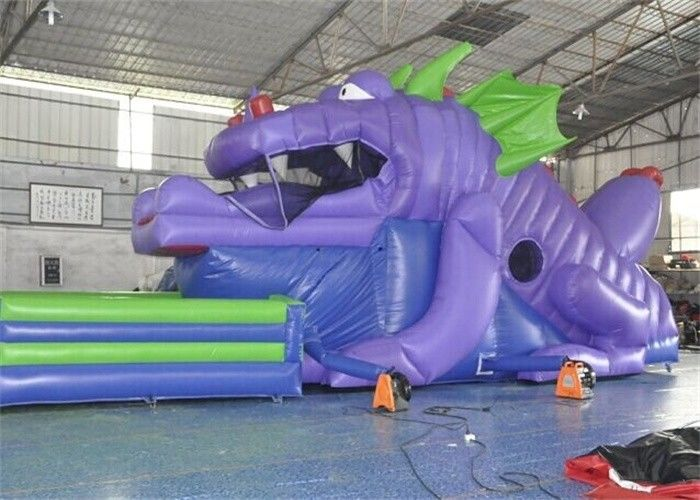 China Customized Size Commercial Inflatable Slide, 18ft Inflatable Dinosaur Slide For Kids factory