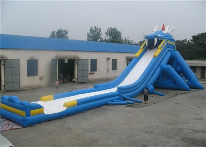 China Outdoor Adult Giant Inflatable Water Slide , Massive Inflatable Slide For Amusement Park factory