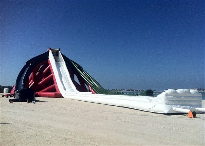 China Rentable Wonderful Backyard Massive Inflatable Water Slide For Kids factory