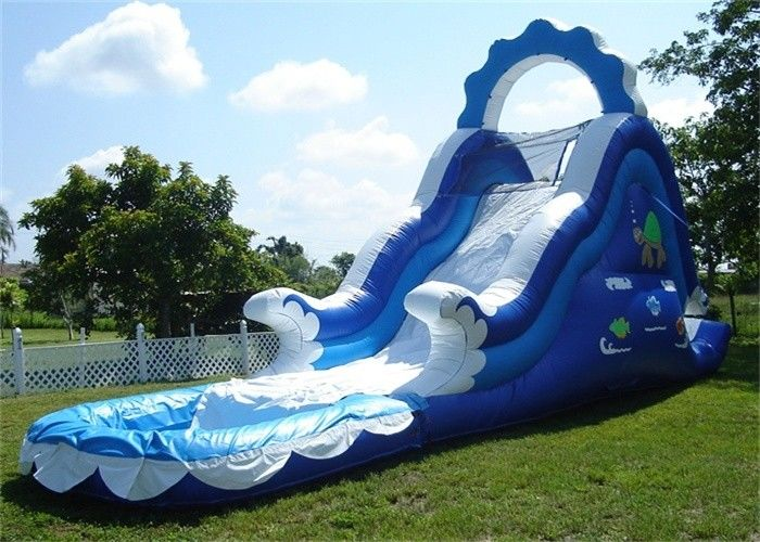 Mini Inflatable Water Slides , Small Inflatable Pool Slide For Water Park