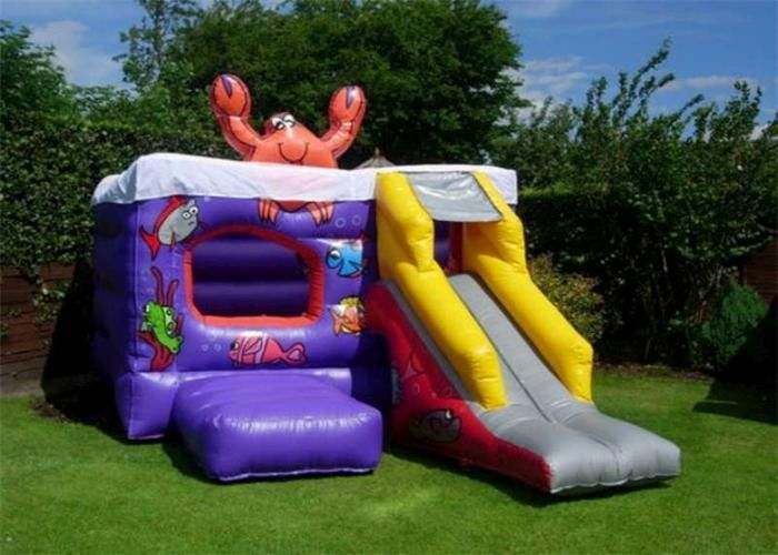 Grassland Inflatable Bouncer , PVC Material Small Slide Bouncer For Kids supplier