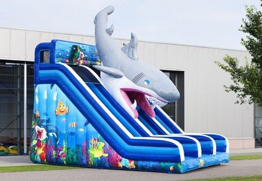 China Waterproof Haaien Cusom Inflatable Shark Slide Durable PVC Material distributor
