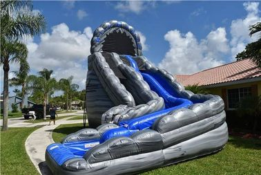 Commercial Blue Huge Inflatable Slides Logo Printing Wild Rapids 24ft Dual Lane Slide With Pool