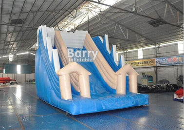 White And Blue Inflatable Water Slides / PVC Tarpaulin OEM Childrens Outdoor Slide