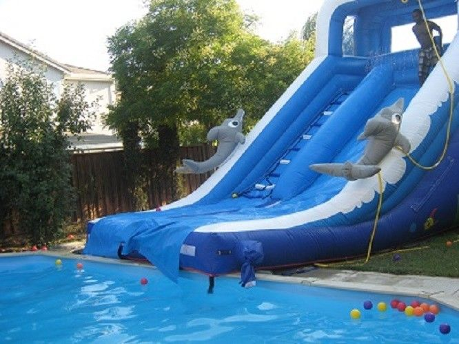Play Inflatable Water Slides For Kids / Dolphin Inflatable Pool