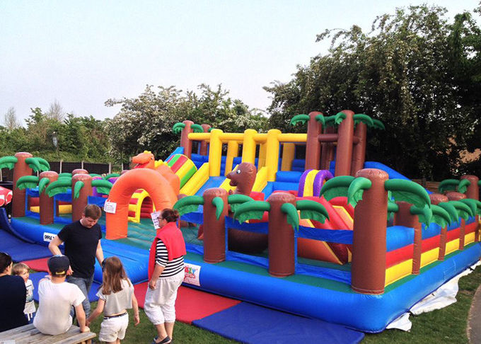 CE Outdoor Inflatable Bouncy Castle With Slide , Commercial Adult Bouncy Castle