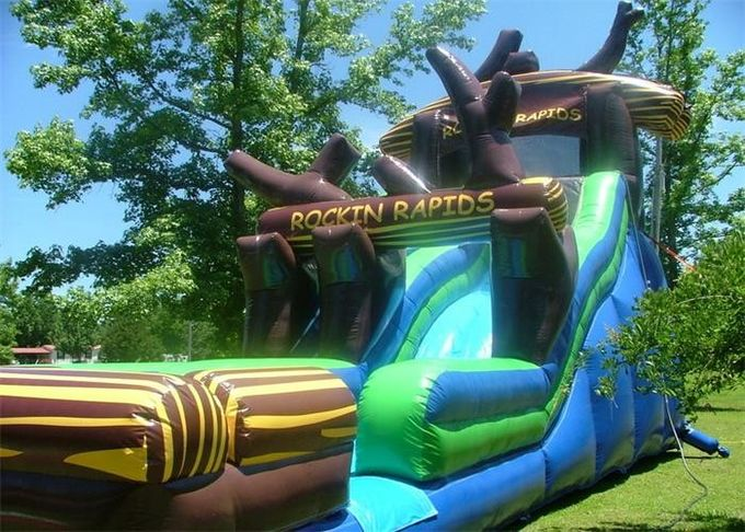 Popular Inflatable Water Slide ,  Commercial Inflatable Water Slide With Tree Shape